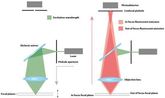Ultrafast Laser Spectroscopy: Departt of Chemistry : Indian ...